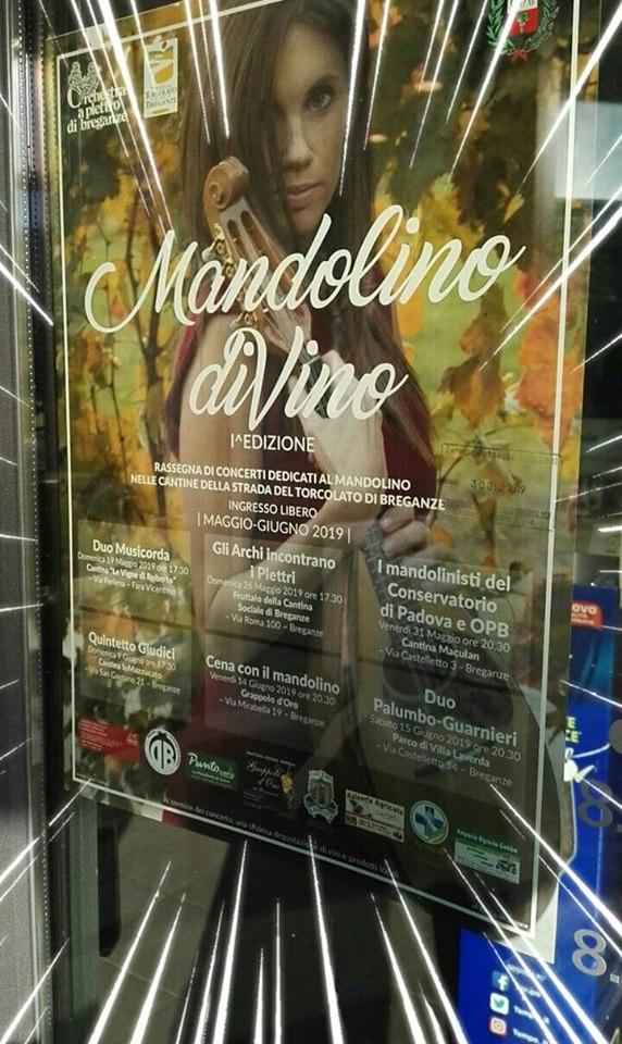 Locandina Mandolino diVino